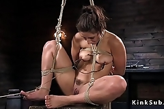 Hogtied brunette gets nipples tormented